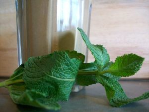Adding mint can make your Green Thickie very fresh tasting but can overpower it