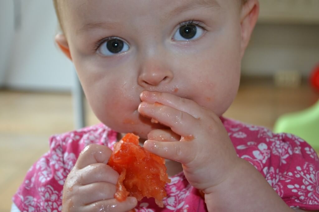 Baby eats whole tomato from Organic vegetable farm box