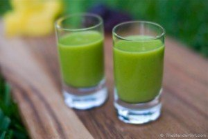 Raw Vegan Pina Colada Green Smoothie: Healthy Blender Recipes