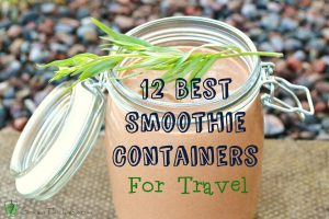 12 Best Smoothie Containers for travel