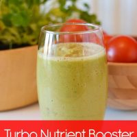 Turbo Nutrient Booster: Vegetable Smoothie Vitamin Powerhouse Recipe (Fruit Free & Raw)