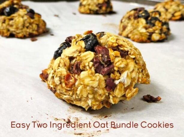 Easy Two Ingredient Oat Bundle Cookies