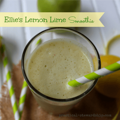 Ellie's Lemon Lime Smoothie Recipe