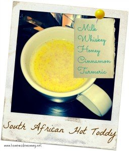 South African Hot Toddy