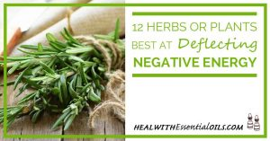 12 Herbs or Plants Best At Deflecting Negative Energy