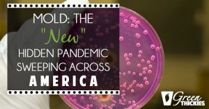 "Mold: The ""New"" Hidden Pandemic Sweeping Across America"