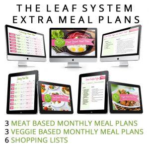 3 LEAF SYSTEM MEAL PLANS