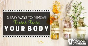 <thrive_headline click tho-post-14124 tho-test-13>3 Easy Ways To Remove Toxins From Your Body</thrive_headline>