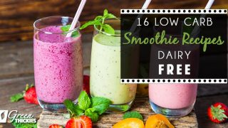 16 Low Carb Smoothie Recipes (Dairy Free)