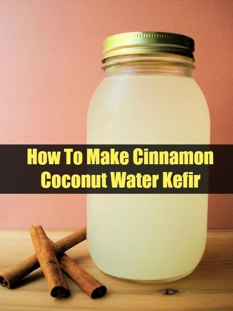 Cinnamon Coconut Water Kefir