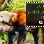 10 Best Guided Meditations For Sleep 1