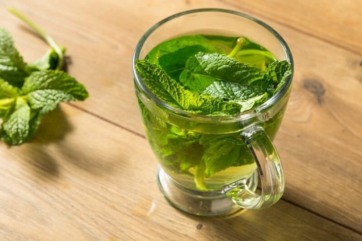 9 Weight Loss Drinks That Work Wonders Homemade Hot Fresh Mint Tea
