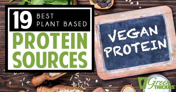 19 Best Plant Based Protein Sources: Complete Whole Foods