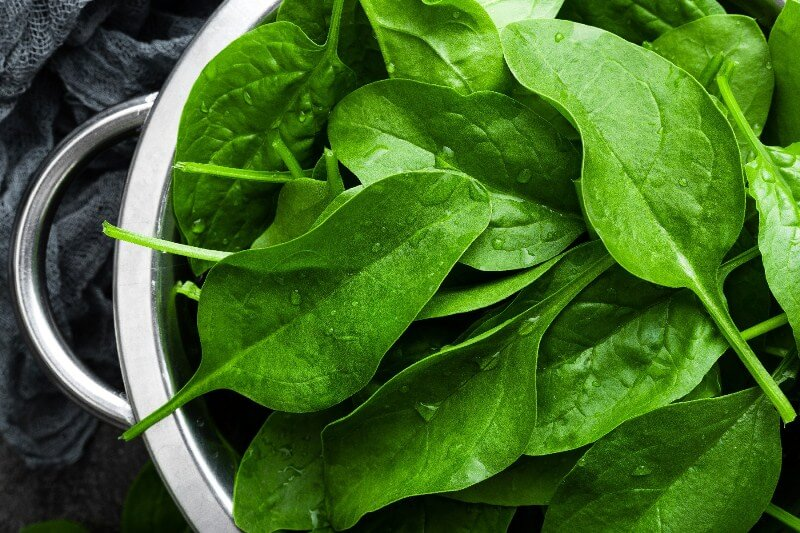 17 Surprising Spinach Nutrition Facts & Health Benefits; Fresh spinach leaves