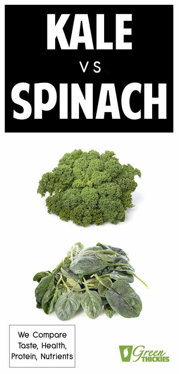 Kale vs spinach.  Which is better?  The battle of the superfood commences. We put these two leafy green powerhouses to the test in every way imaginable.Which do you think was the winner?Click the link to read the full article.#greenthickies #spinach #kale #leafygreens #spinachbenefits #kalebenefits #spinachnutrition #kalenutrition