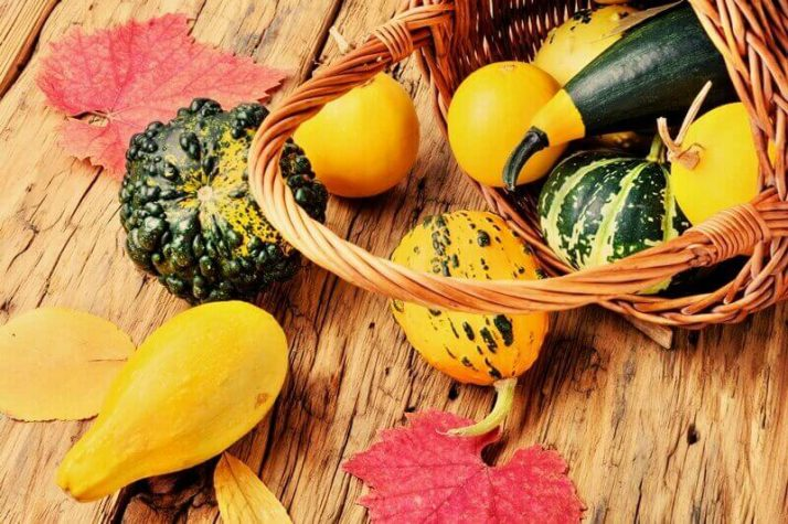 34 High Protein Vegetables You Probably Already Eat; Pumpkin set in basket squashes