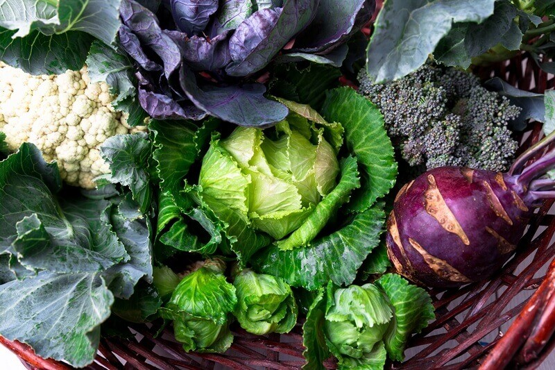 34 High Protein Vegetables You Probably Already Eat; Various of Cabbage Broccoli Cauliflower