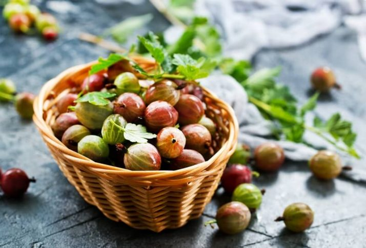 21 Lowest Calorie Fruits For Weight Loss List; gooseberry