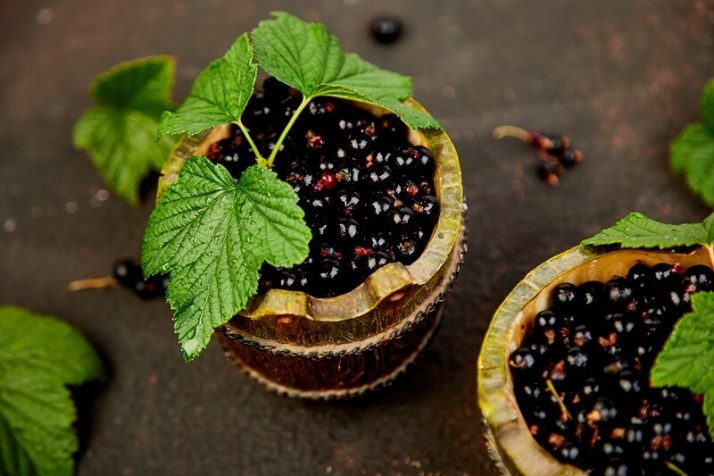21 Lowest Calorie Fruits For Weight Loss List; Blackcurrant berries with leaves
