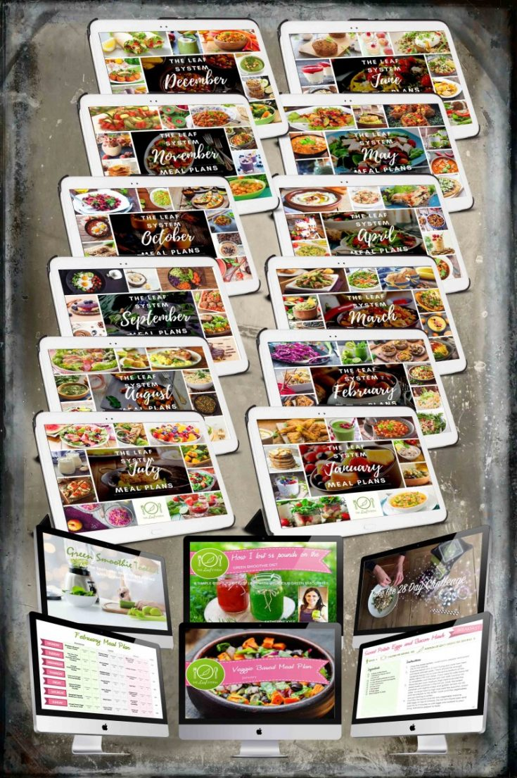 The Leaf System: The Complete Weight Loss System and Monthly Meal Plans + 12 FREE Bonuses