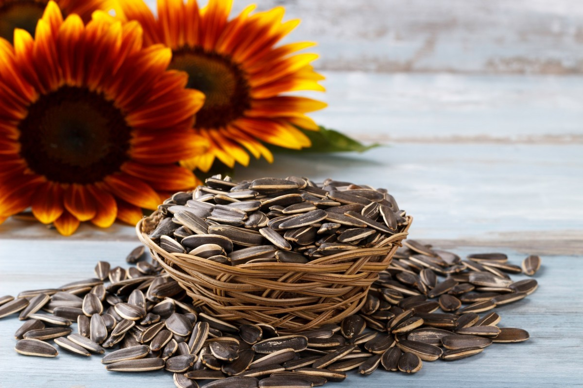 200+ Smoothie Ingredients Shopping List Printable; Roasted sunflower seeds