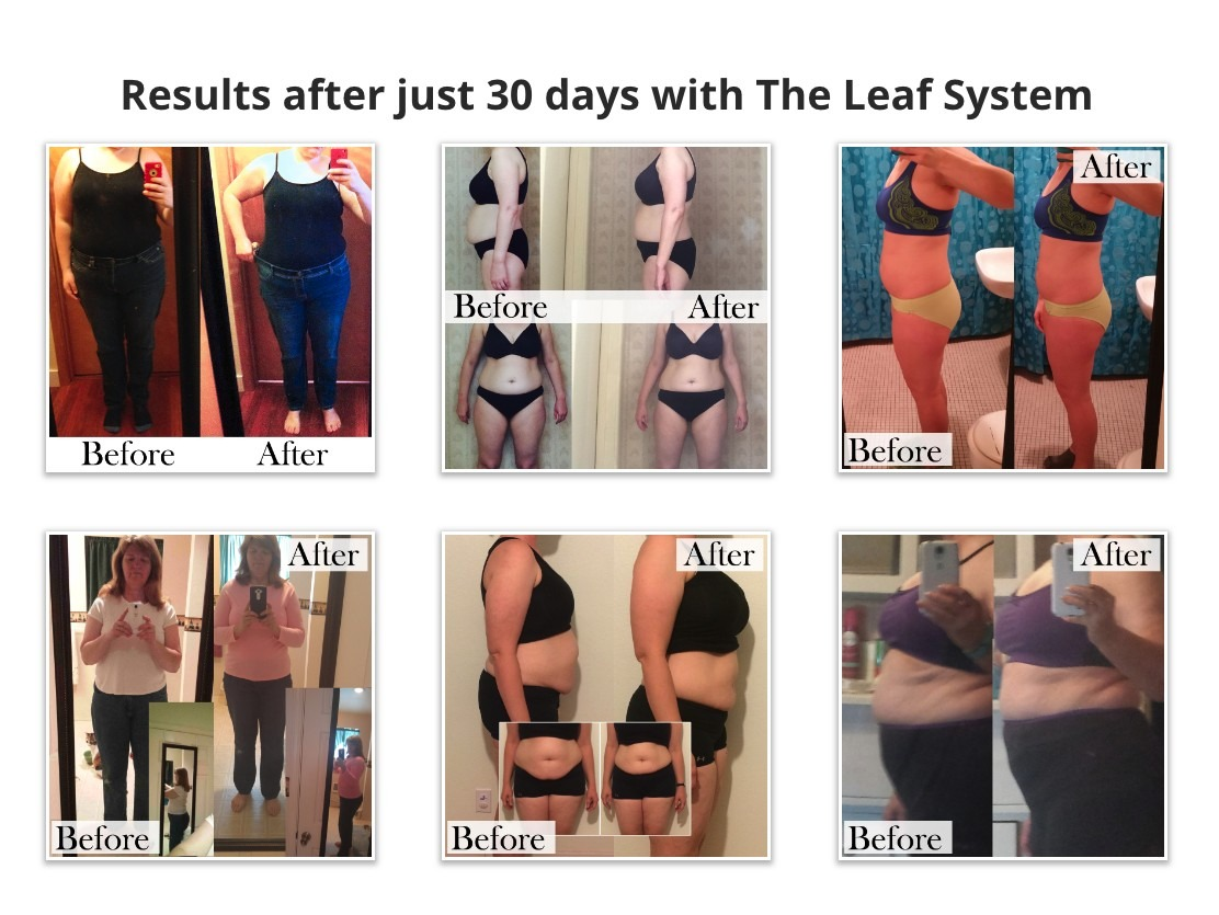 The Leaf System Results
